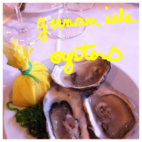 vinodorado g.l. oysters